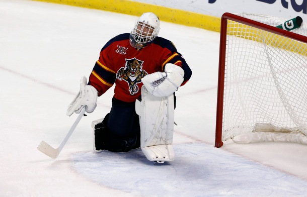 Tim Thomas (Robert Mayer-USA TODAY Sports)